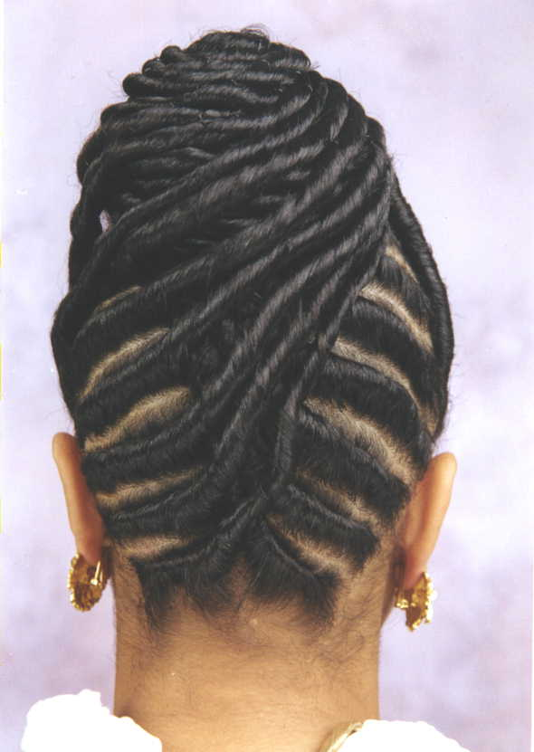 Braiding Style Ideas Braids Hairstyle Pictures Provenhair